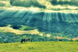 Dalat Langbiang Mountain